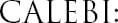 CALEBI Logo